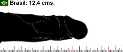 Tamaño promedio del pene en Brasil