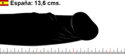 Tamaño del pene promedio en España